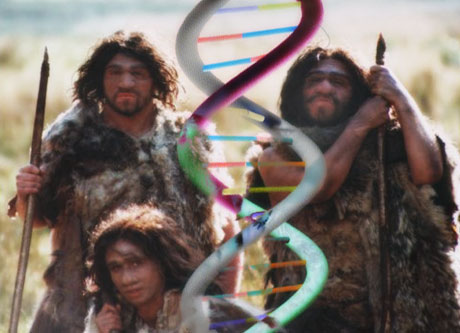 Neanderthal+dna+sequence