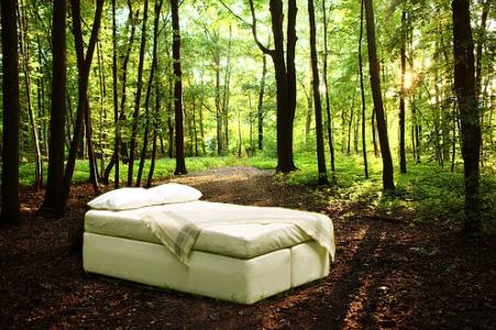 Mattress Toxicity: Killing You Softly  28872organic_mattress