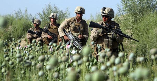 아프가니스탄 사람